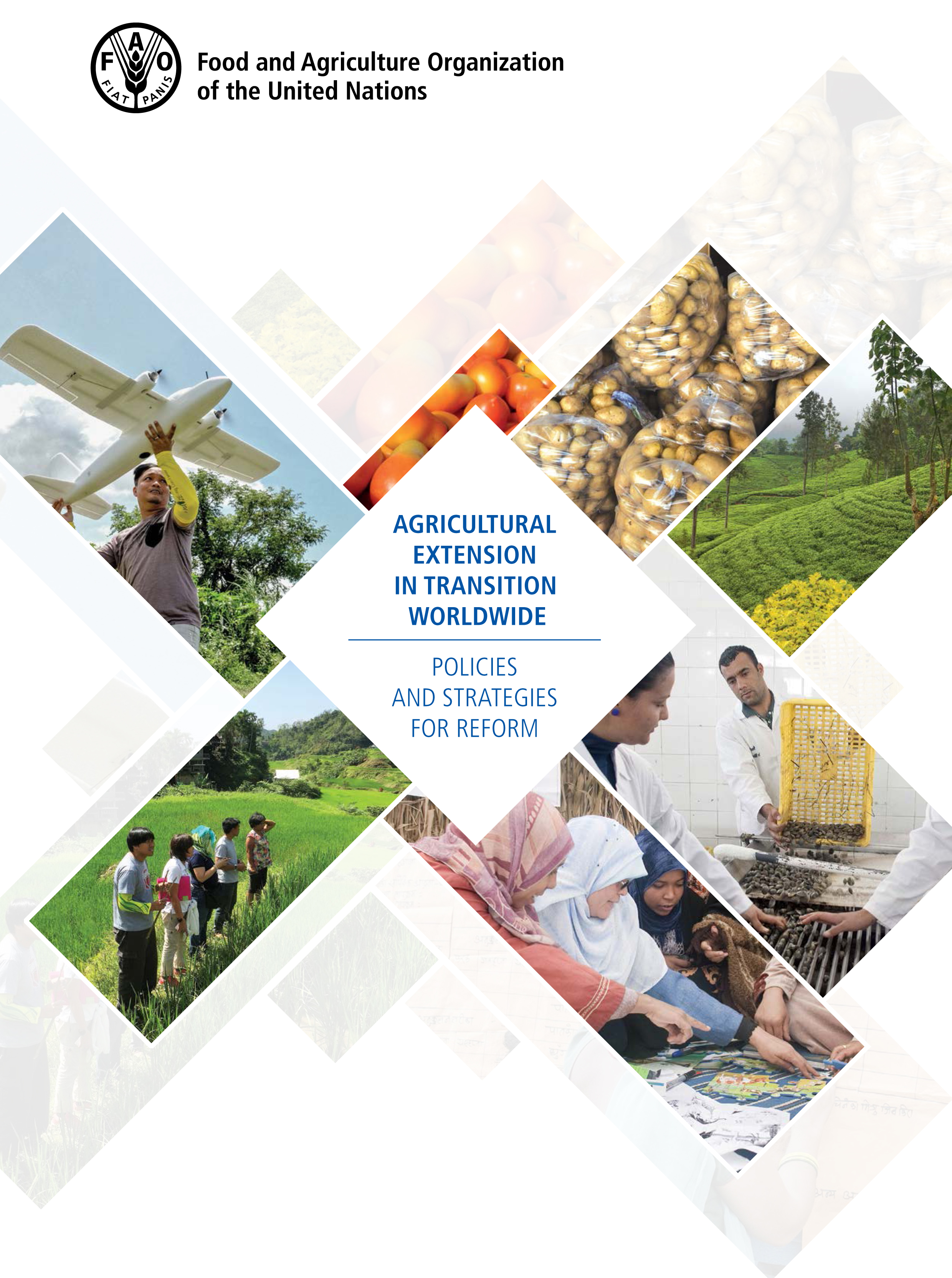 FAO Agricultural Extension inTransition Worldwide Policies and Strategies for Reform